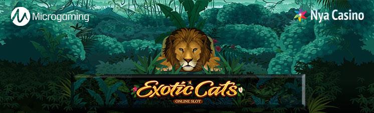 exotic cats spelautomat