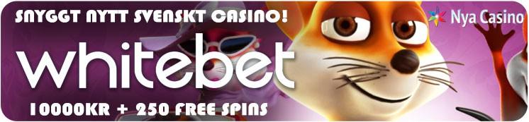 nya casino 2017